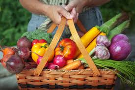 Fruit and veg in a basket
