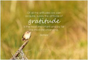 natural-gratitude