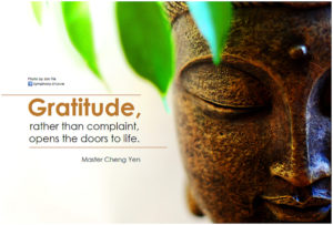 the-gratitude-buddha